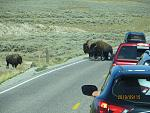September 2019 - Yellowstone NP