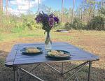2018 Big Pine Key Bella's flowers 83