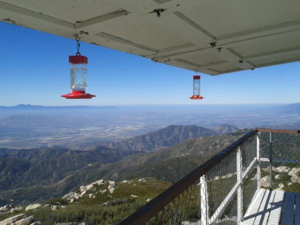 Keller Peak lookout up road from camp