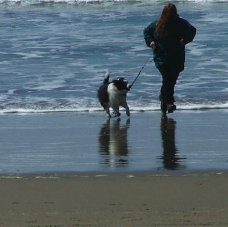 run on beach